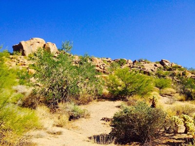 Terrain for sales at Statement Homesite in Estancia 27265 N 98th Way #220 Scottsdale, Arizona 85262 États-Unis