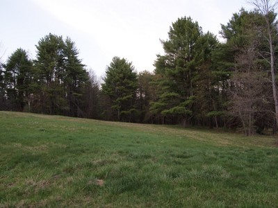 Land for sales at Large Wooded Estate Style Lot 0 Roberts Road  Rollinsford, New Hampshire 03869 Vereinigte Staaten