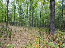 Land for sales at Erwinna, PA Lot 2 Lily Valley Rd   Erwinna, Pennsylvania 18920 United States