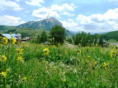 Land for sales at 88 Peanut Lane  Mount Crested Butte, Colorado 81225 United States