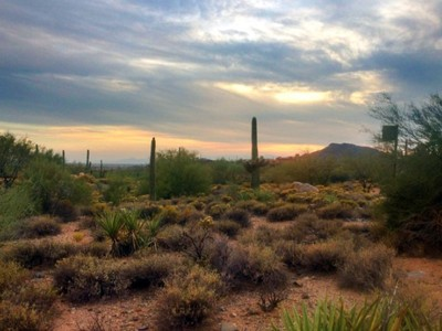 Terreno for sales at Non-membership Homesite in Desert Mountain's Premier Village of Saguaro Forest 41615 N 102nd Way #10 Scottsdale, Arizona 85262 Estados Unidos