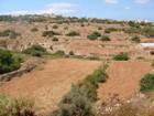 地產 for  sales at Farmland in San Gwann Valley San Gwann, Sliema Valletta Surroundings 瑪律他