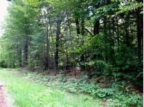 Terrain for sales at Idyllic Park-Like Cul-De-Sac 0 Deer Run Ln.   Goshen, Connecticut 06756 États-Unis