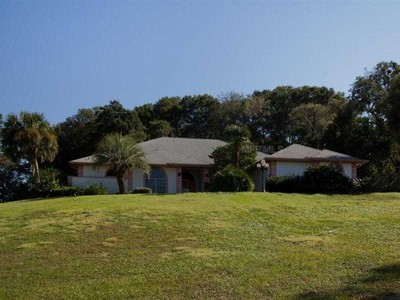 獨棟家庭住宅 for sales at Sorrento, Florida 31216 County Road Sorrento, 佛羅里達州 32776 美國