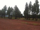 Земля for sales at Seven Lots in the Pines 7 Lots On Jaclyn DR Flagstaff, Аризона 86001 Соединенные Штаты