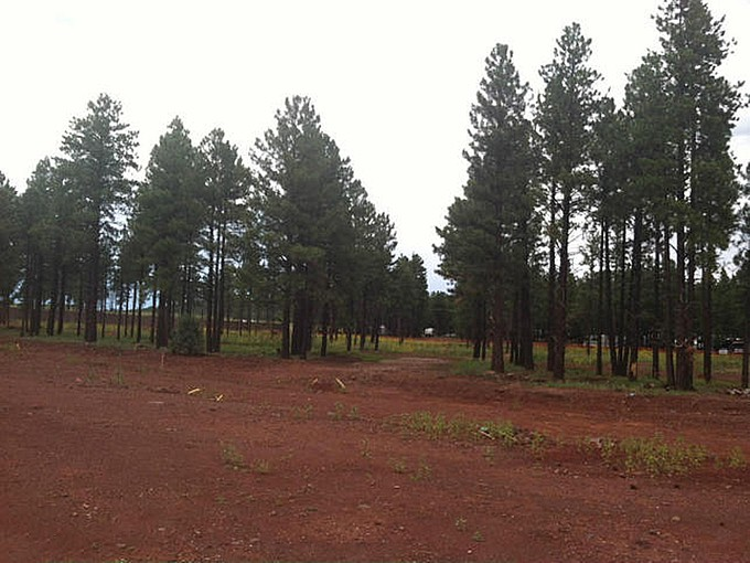 Land for sales at Seven Lots in the Pines 7 Lots On Jaclyn DR  Flagstaff, Arizona 86001 United States