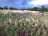 Property Of Gorgeous Flagstaff Home