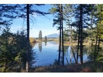 Land for sales at Beautiful Building Lot 81 Bear Paw Loop   Bigfork, Montana 59911 United States