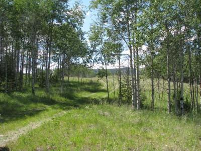 Arazi for sales at Hwy 1 Parcel A-1, A-2 & D   Anaconda, Montana 59711 Amerika Birleşik Devletleri
