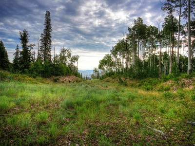 Land for sales at Premium Colony Home Site off of Another World Ski Run 63 White Pine Canyon Rd Lot #65  Park City, Utah 84098 United States