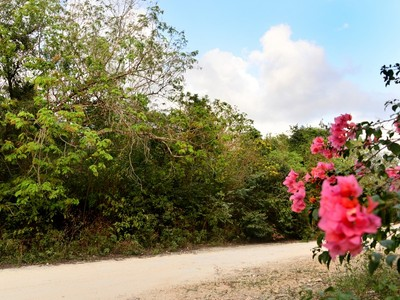 Land for sales at GREAT LOCATION PARCEL Tulum, Quintana Roo Mexico