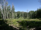 Land for  sales at Creeks G 611 Edgewood Lane Snowmass Village, Colorado 81615 United States