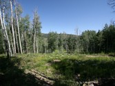Land for sales at Creeks G  Snowmass Village,  81615 United States