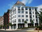 Condominium for  rentals at Rental 850 East Main Street, Unit 301 Stamford, Connecticut 06902 United States
