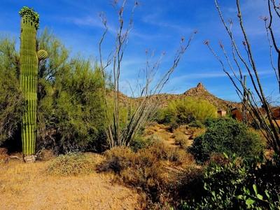 Terreno for sales at Interior .6 Acre Lot in the Prestigious Guard Gated Golf Community of Estancia 27477 N 96th Way #74 Scottsdale, Arizona 85262 Stati Uniti