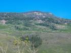 Terrain for sales at Spring Park Meadows, Lot 10 544 Spring Park Road Carbondale, Colorado 81623 États-Unis