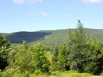 Terrain for sales at Maple Hill Road - 5 Acre Lot 762 Maple Hill Road Mount Holly, Vermont 05758 États-Unis
