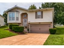 Maison unifamiliale for sales at Charming inside and out 4209 Sunny Glen   Arnold, Missouri 63010 États-Unis