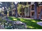 Condominium for  rentals at Spacious Luxury Condo offers Privacy & Convenience 4488 E Thomas Rd #2013   Phoenix, Arizona 85018 United States