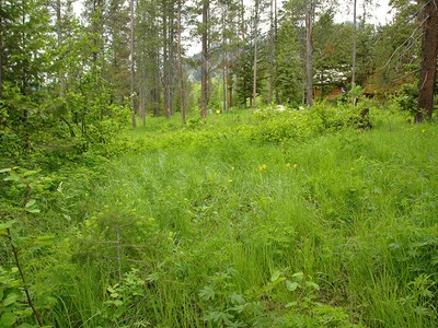 Land for sales at Best Priced Lot in Granite Ridge 7750 N LOWER GRANITE RIDGE RD  Teton Village, Wyoming 83025 Vereinigte Staaten