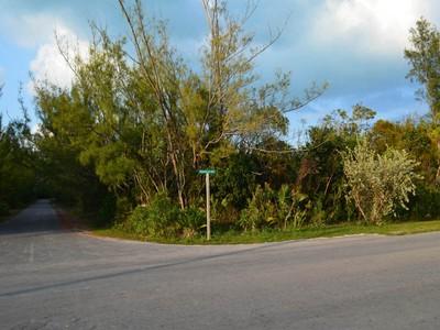 Land for sales at Lot 19 & 20 Block 160 Treasure Cay, Abaco Bahamas