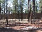 Land for sales at Great Presidio Lot 2955 S Pepita DR Flagstaff, Arizona 86001 United States