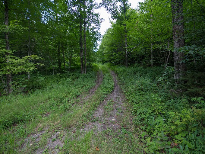 Land for sales at Pecks Lake Building Lots 00 North Shore Rd Lot 1   Gloversville, New York 12078 United States