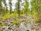 Terrain for sales at 18.6 Wooded Acres with Creek 8100 E Lake Creek Rd  Heber, Utah 84032 États-Unis