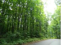 Terrain for sales at 2396 Manitou Trail    Harbor Springs, Michigan 49740 États-Unis