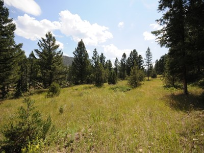 Land for sales at Private Canyon Acreage Twin Antler  Big Sky, Montana 59716 United States
