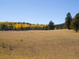 Property Of Bear Aspen Ranch