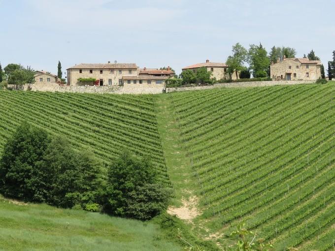 ブドウ園 for sales at Country estate in Chianti region Gaiole in Chianti Gaiole In Chianti, Siena 53013 イタリア