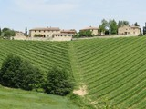Vineyard for sales at Country estate in Chianti region Gaiole in Chianti Gaiole In Chianti, Siena 53013 Italy