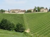 Vigneto for vendita at Casale nella regione del Chianti  Gaiole In Chianti,  53013 Italia