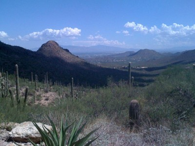 Земля for sales at Gorgeous and Private 5+ Acre Lot with Mountain & City Light Views 1971 N Box Canyon Place #8  Tucson, Аризона 85745 Соединенные Штаты