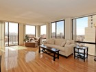 Condominio for sales at Super Sunny Skyline Views 345 W Fullerton Pkwy Unit 1005 Chicago, Illinois 60614 Stati Uniti