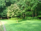 Terreno for sales at Private, Lightly Wooded Lot in Greenfield Hill 740 Gilbert Hwy  Fairfield, Connecticut 06824 Estados Unidos