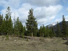 Terrain for sales at Skywood Preserve 20 Acre Homesite Skywood Road Lot 12 Big Sky, Montana 59716 États-Unis