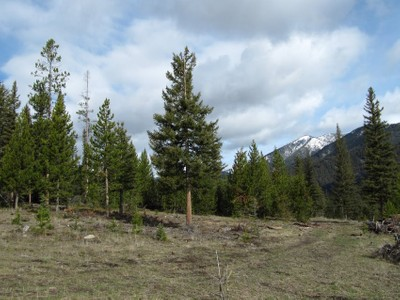 Land for sales at Skywood Preserve 20 Acre Homesite Skywood Road Lot 12 Big Sky, Montana 59716 United States