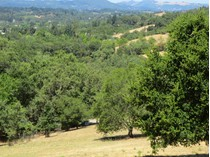 Terreno for sales at 1020 Borel Ln, Healdsburg, CA 95448    Healdsburg, California 95448 Estados Unidos