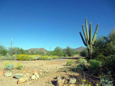 Arazi for sales at One of Four Easy-Build Lots In The Sought-After Shea Corridor 13102 E Cochise Rd #3 Scottsdale, Arizona 85259 Amerika Birleşik Devletleri