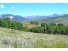 토지 for  sales at Statley Location For Your Dream Build 1363 Red Mountain Ranch Road   Crested Butte, 콜로라도 81224 미국