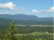 土地 for sales at 40 Pristine Acres North of Whitefish 555 Tamarack Creek Road   Whitefish, モンタナ 59937 アメリカ合衆国
