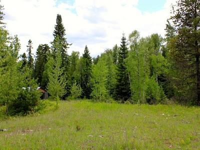 地產 for sales at 450 Timber Doodle 450 Timber Doodle Lane Whitefish, 蒙大拿州 59937 美國