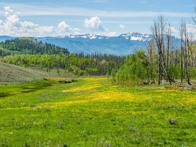 Farm / Ranch / Plantation for sales at 11394 County Road 11  Kremmling, Colorado 80459 United States