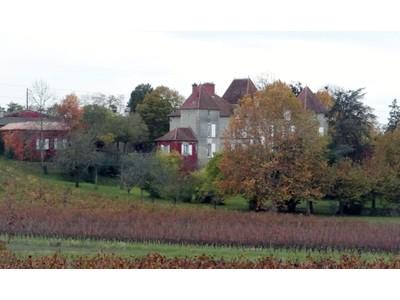 Vinhedo for sales at Wonderful 12 hectares vineyard Bordeaux Bordeaux, Aquitaine 33564 França