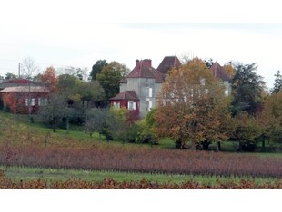 Vườn nho for sales at Wonderful 12 hectares vineyard Bordeaux Bordeaux, Aquitaine 33564 France