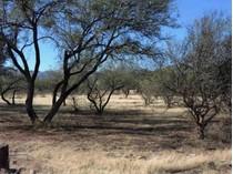 Land for sales at Great Level Lot 13 Avenida Gutierrez   Tubac, Arizona 85646 United States
