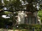 独户住宅 for sales at 1121 Washington Avenue  New Orleans, 路易斯安那州 70130 美国