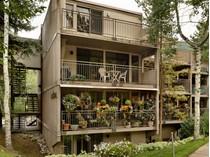 Condominium for sales at Downtown Aspen Condo 800 East Hopkins Avenue Unit B-1  Central Core, Aspen, Colorado 81611 United States